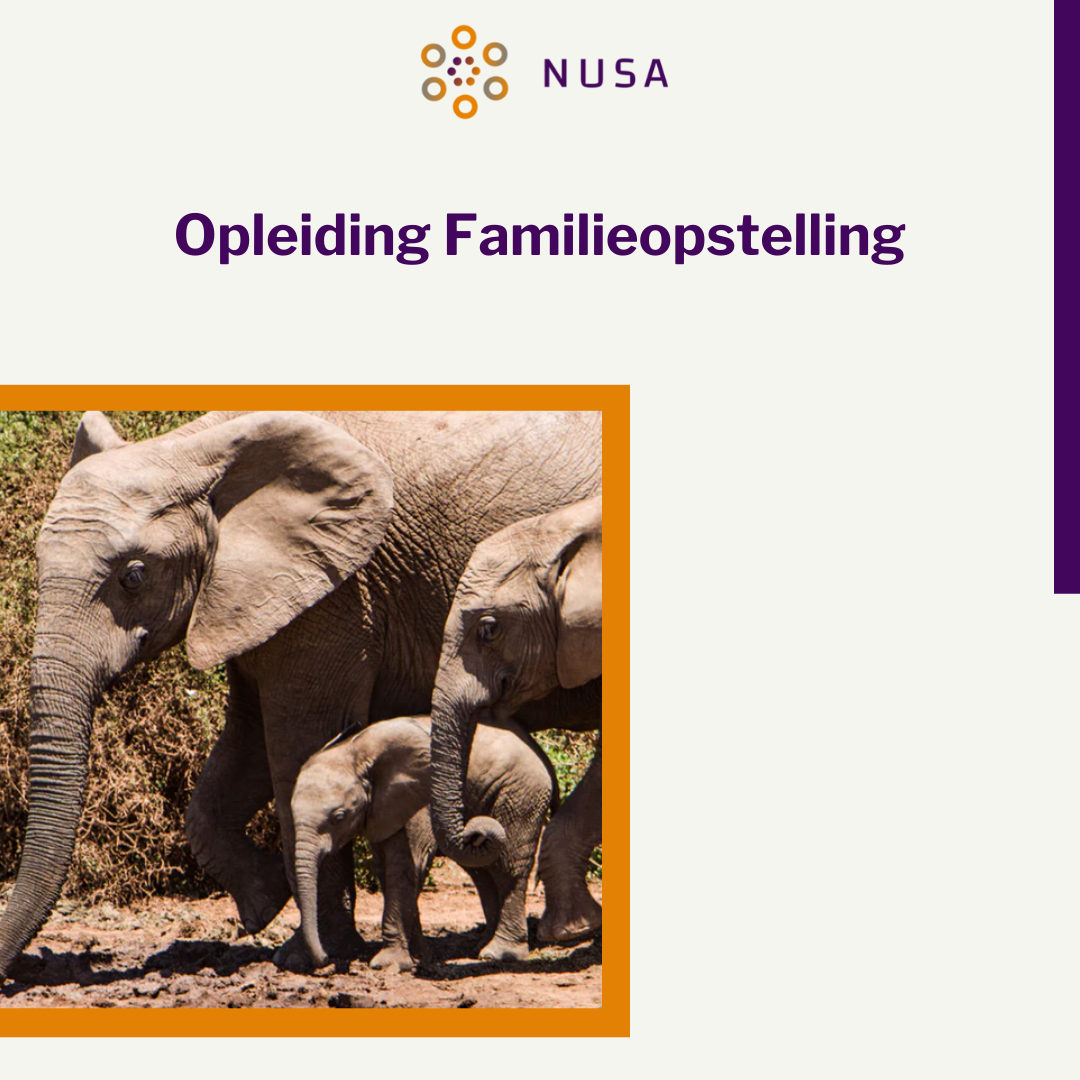 Opleiding familieopstelling
